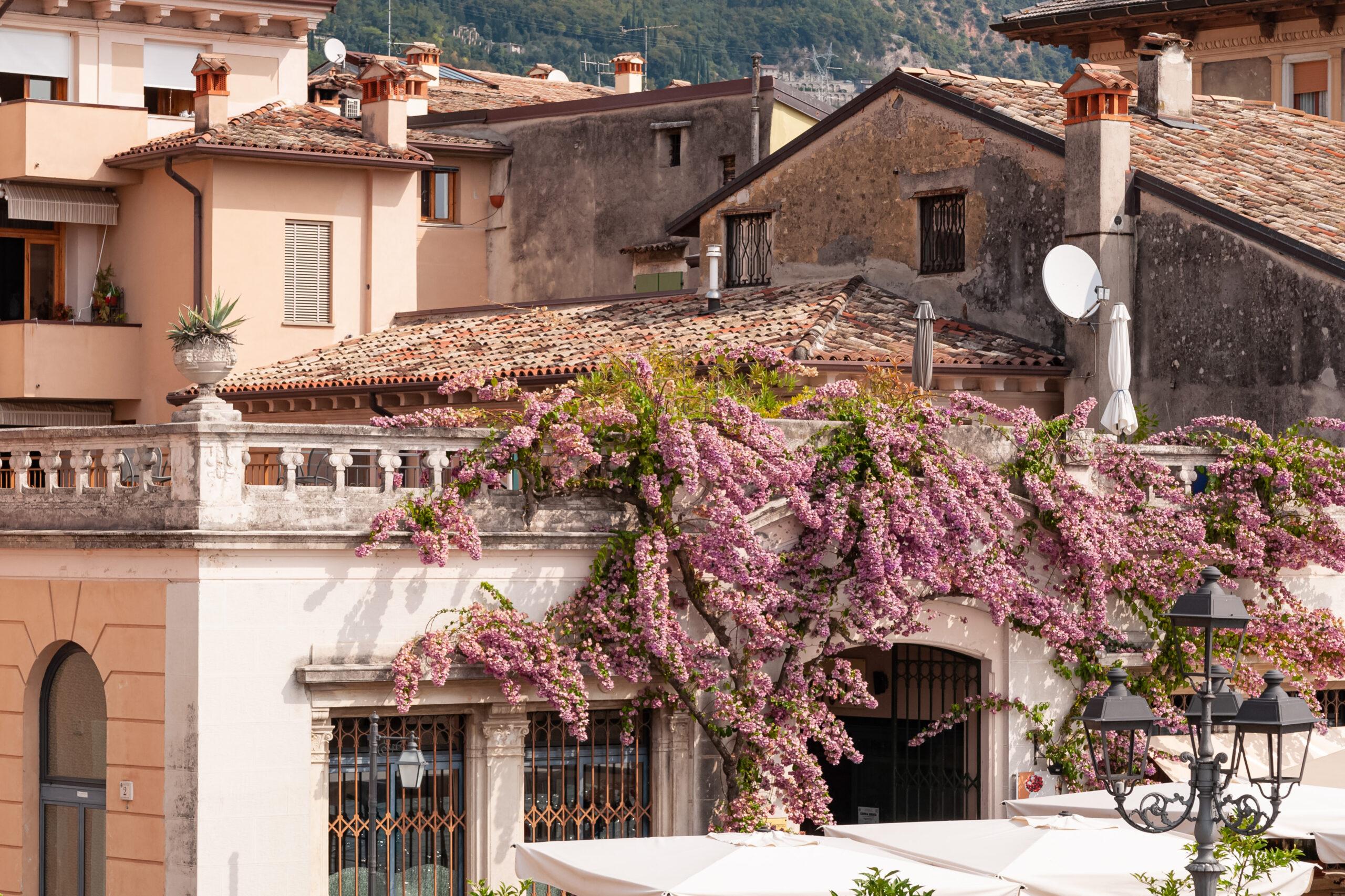 Concorso Balconi e Vetrine rosa Aspettando il Giro d'Italia