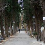 Commemorazione dei defunti: orario cimiteri